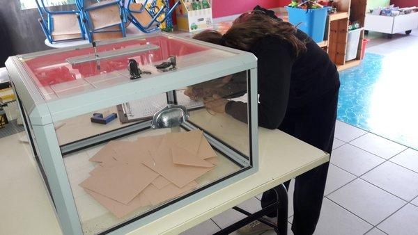élections CE2 13 octobre (12)